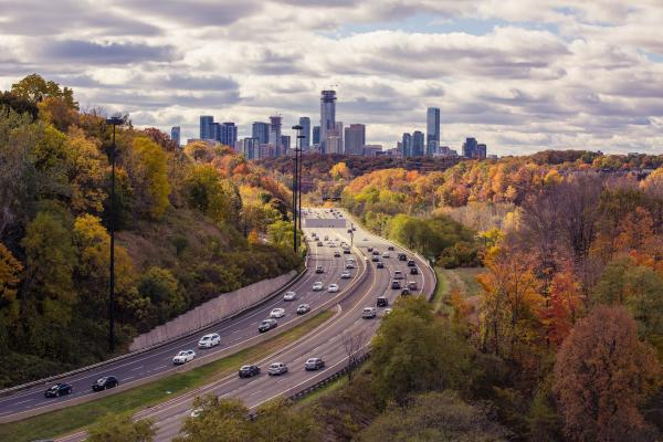 View of tree-lined highway into city_rural vs. urban