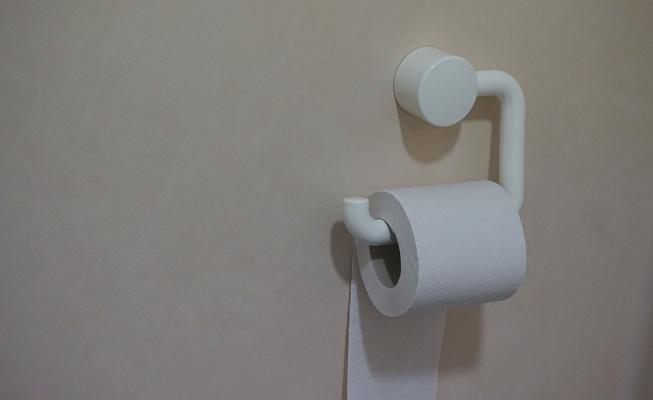 Toilet paper and holder