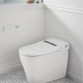 The DXV SpaLet AT200 LS toilet has gotten even smarter. Now added to its two-nozzle water-spray system, air dryer, hands-free flushing, automated lid opening/losing and seat heating performance are odor control features. The Air Shield deodorizer with replaceable charcoal filter and Room Refresh ion technology help purify the air in the room.