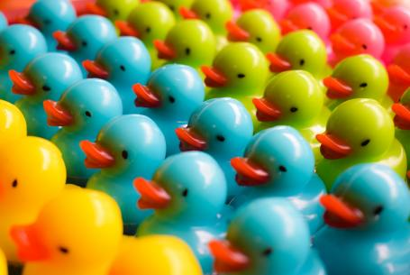 Rows of toy ducks